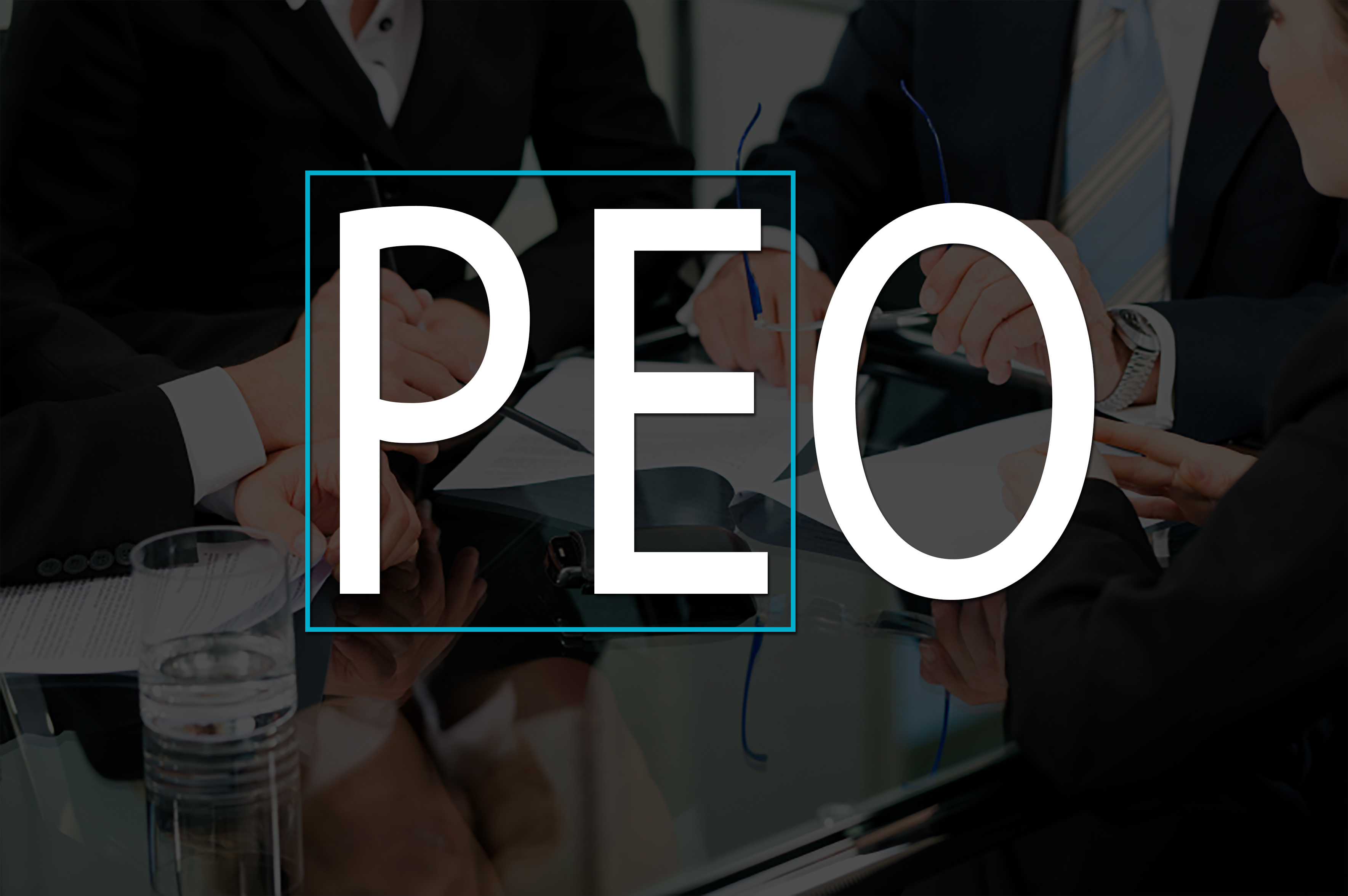Private equity firms considering a purchase within the PEO industry