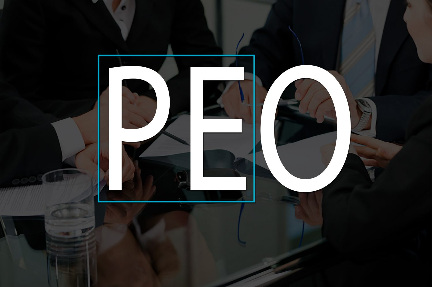 PEO Industry Publication